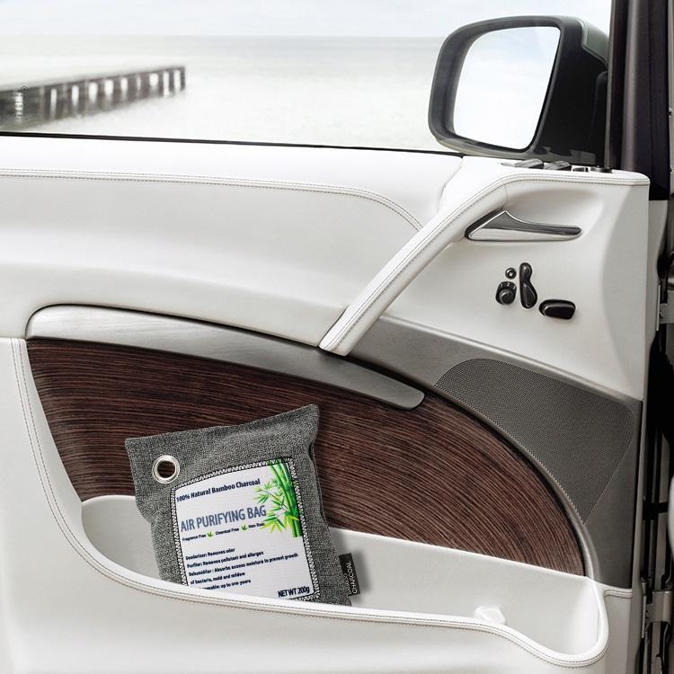 PureAir Max Review: the bag in the car
