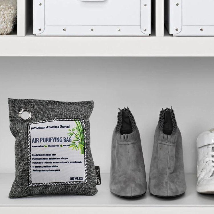 PureAir Max Review: the purifying bag next to shoes