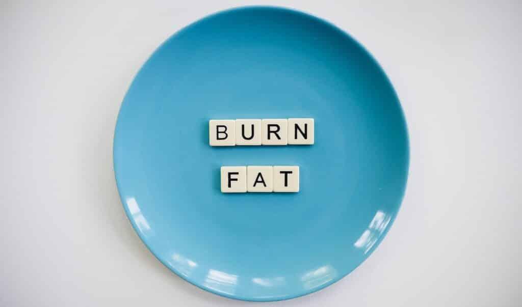 ProVen: burn fat image